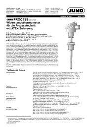 Widerstandsthermometer für die Prozesstechnik mit ATEX ... - Jumo
