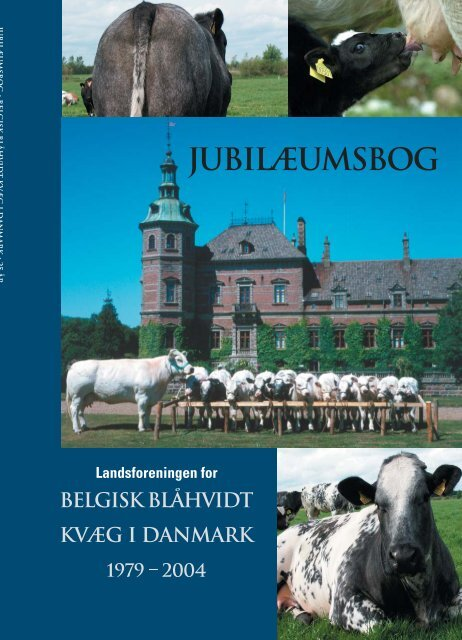 BBK Jubilæumsbog