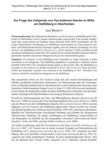 Zur Frage des Indigenats von Poa badensis Haenke - VEREIN zur ...