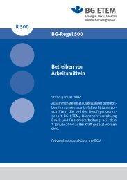 BGR 500 - Die BG ETEM