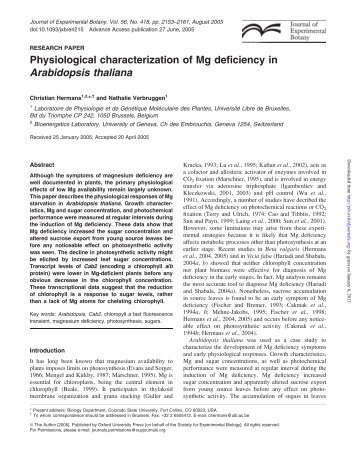 Physiological characterization of Mg deficiency in Arabidopsis thaliana