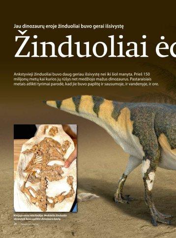 Jau dinozaurų eroje žinduoliai buvo gerai išsivystę - Iliustruotasis ...