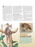 Jau dinozaurų eroje žinduoliai buvo gerai išsivystę - Iliustruotasis ... - Page 3
