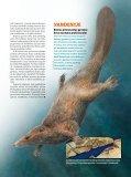 Jau dinozaurų eroje žinduoliai buvo gerai išsivystę - Iliustruotasis ... - Page 4