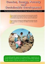 Botswana Gender Audit Flyer - Energia