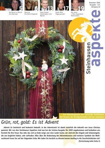 Ausgabe 12/2009 - Aspekte Steinhausen
