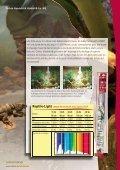 Guide de l´éclairage - Dohse Aquaristik KG - Page 4