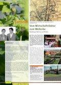 Gärtnerstadt Die - Landesgartenschau Bamberg - Seite 2