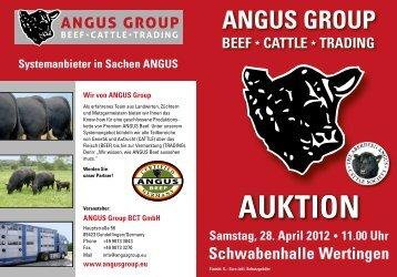 AUKTION - Donaumoos Angus