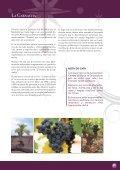 Ruta de la Garnacha (PDF) - Bodegas Ruberte - Page 5