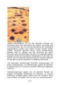 Technik archäologischer Ausgrabungen - Page 6