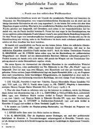 Neue paläolithische Funde aus Mähren - quartaer.eu