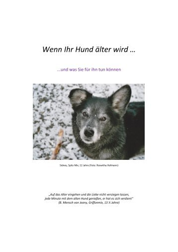 Zur Broschüre Thales Produktfamilie - Hund Büromöbel