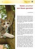 Ihre Mitgliederzeitschrift - Tierheim Hannover - Seite 4