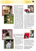 Ihre Mitgliederzeitschrift - Tierheim Hannover - Seite 6
