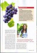 Trollinger - Weingut Drautz-Hengerer - Seite 4