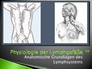 Physiologie der Lymphgefäße