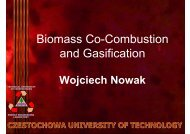 Biomass Co-Combustion and Gasification