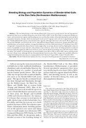Breeding Biology and Population Dynamics of Slender ... - Imedea