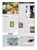 Schmetterlings- effekt - Seite 4