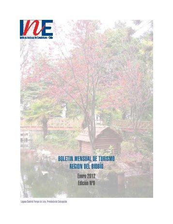 Boletín de Movimiento Turístico Edición N° 9 Enero - INE BÍO-BÍO