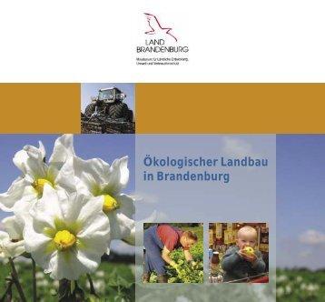 Ökologischer Landbau in Brandenburg - Ministerium für Infrastruktur ...