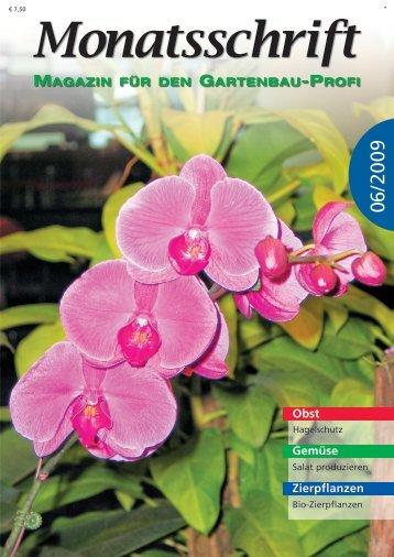 Obst Gemüse Zierpflanzen - Bioblumen