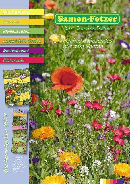 Trockenblumenmischung Samen Saatgut Saat Blumenmischung Strohblume Herbstdeko