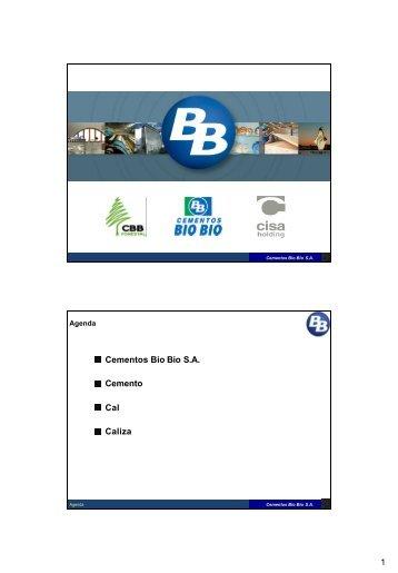 1 Cementos Bio Bio S.A. Cemento Cal Caliza