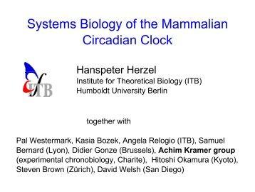 Systems Biology of the Mammalian Circadian Clock