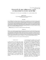 Estratigrafía de capas sedimentarias y suelos correspondientes en ...