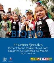 Resumen Ejecutivo - Programa de las Naciones Unidas para el ...