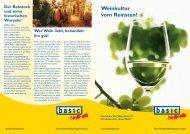 Tafeln und Wein! - basic Bio-Genuss für alle