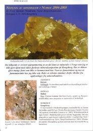 Nyfunn av mineraler i Norge 2004-2005 PDF - NAGS