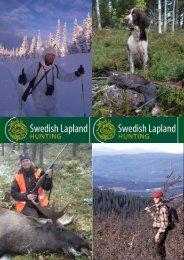 Jagd in Swedish Lapland – der letzten Wildnis Europas