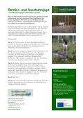 Jagd in Swedish Lapland – der letzten Wildnis Europas - Seite 4