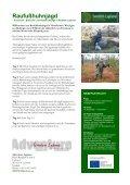 Jagd in Swedish Lapland – der letzten Wildnis Europas - Seite 6