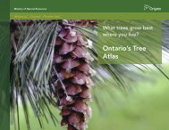 Ontario's Tree Atlas - Ministry of Natural Resources
