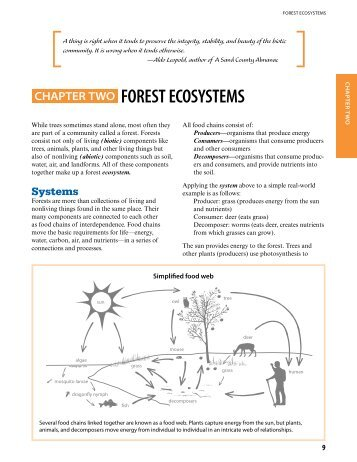 Chapter Two: Forest Ecosystems - Minnesota Department of Natural ...