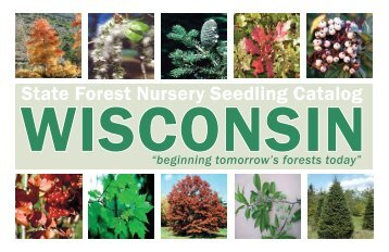 State Forest Nursery Seedling Catalog - Wisconsin Department of ...