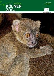 Nr. 4/2012, 55. Jahrgang (PDF) - Kölner Zoo