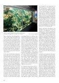 Liebe Freunde des Kölner Zoos! - Seite 6