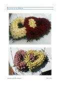 Katalog Blumenschmuck auf der Motorhaube - Ostseelimousine - Seite 5