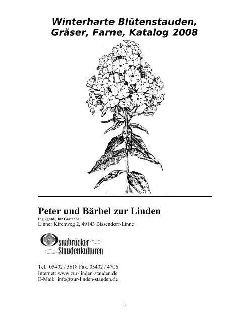 Funkie Hosta Hybride /'Wide Brim/' Blattschmuckstaude 1 Liter Topf winterhart