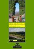 Rolandswerth – Mehlem - Kunstwanderungen - Seite 2