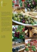 wodtke outdoor living - Imporchama - Page 7
