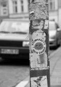 FALSCHE PRIORITÄTEN - Stadtgespräche Rostock - Seite 6