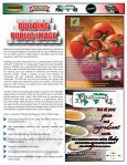 August - Bellissimo Foods - Page 3
