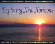 CBE 2009 Annual Report - College of Engineering - The University ...