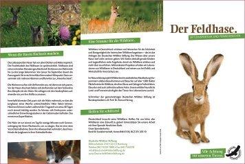 Der Feldhase. - Deutsche Wildtier Stiftung